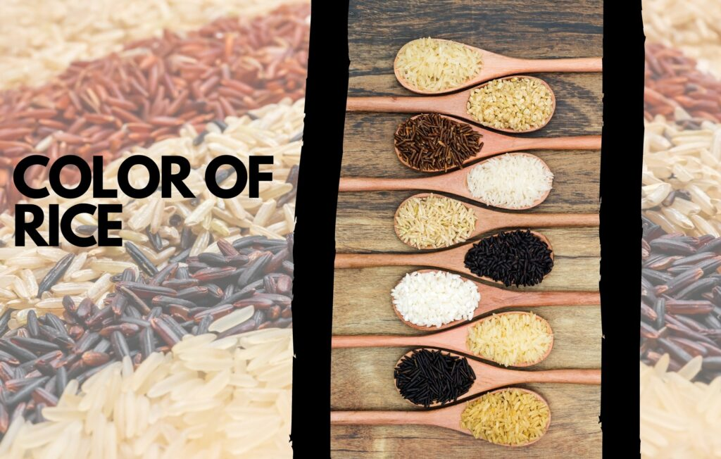 color of rice