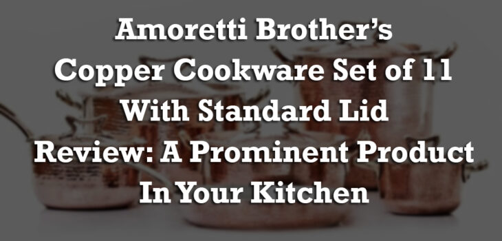 Amoretti Brother's Copper Cookware Set of 11 with Standard Lid